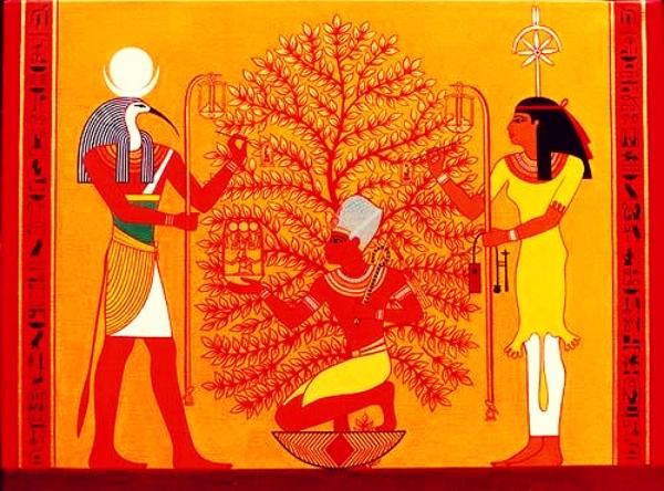 Egypt Tree Of Life