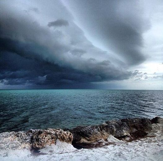 Shelf cloud on 3-6-2014 (tornado warned) squall line over Marathon, Florida.