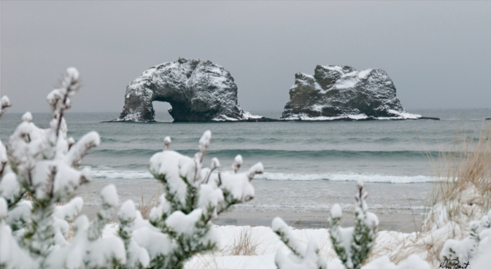 Snow in Rockaway Beach, Oregon 2-07-2014