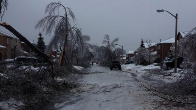 "Toronto Ice Storm 12-22-2013 ""Winter Storm Gemini"""