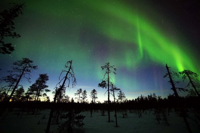 4-20-2014: polar lights from directly under the auroral oval during yesterdays minor storm to active conditions. The photo was taken by Asko Aikkila from Kuusamo, Finland.