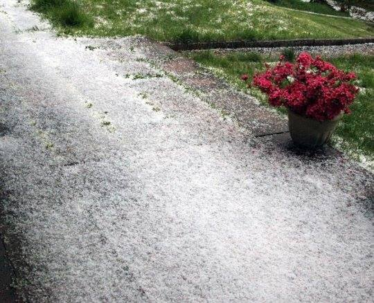 4-18-2014: Small hail in Guebwiller (eastern France) this afternoon.  Photo: Jean-Marie Schreiber via. Julien Kieny