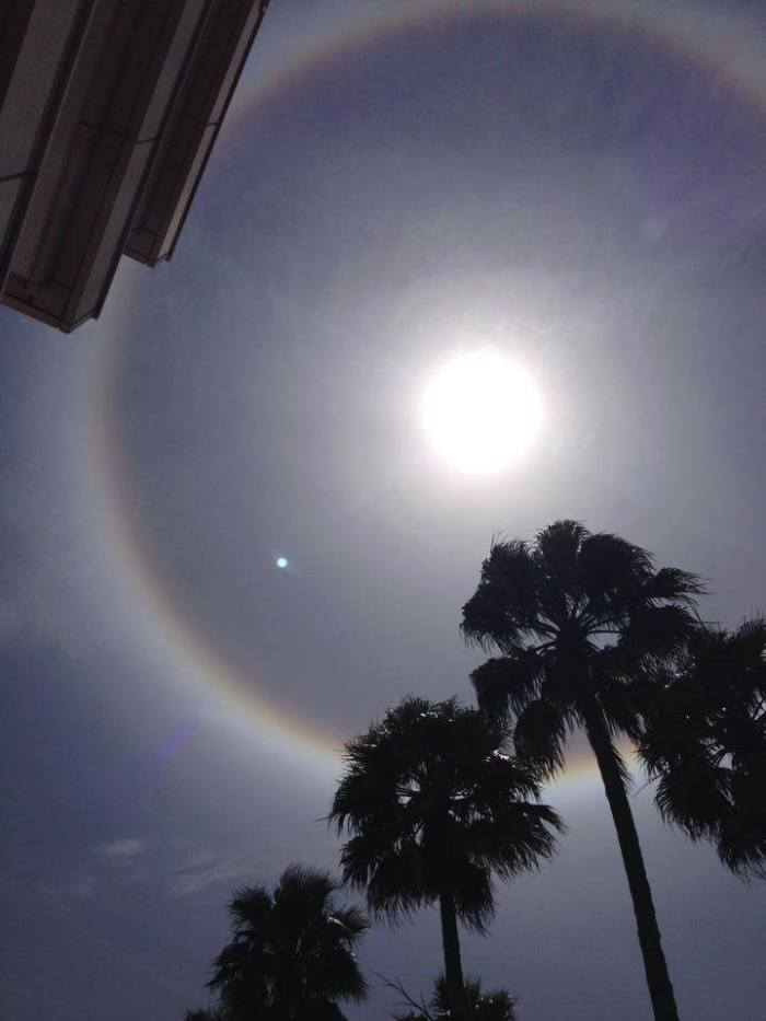 4-16-2014: Sun Halo in Tampa, Florida today