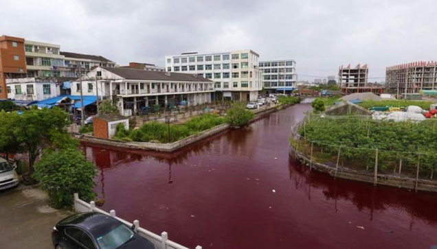 The residents of Wenzhou, China, woke up last Thursday to discover that the inner city river had turned blood-red. Everyone is puzzled, as this has never happened before and nobody knows the cause yet. China Radio International reports:     Inspectors from the Wenzhou Environmental Protection Bureau are taking samples and analyzing the cause of the incident.     The villagers pointed out that there wasn't a chemical plant along the upper stream.     Local residents say the river was flowing normally at 4am, but it started to redden at around 6am, and in no time at all had turned as crimson as blood.