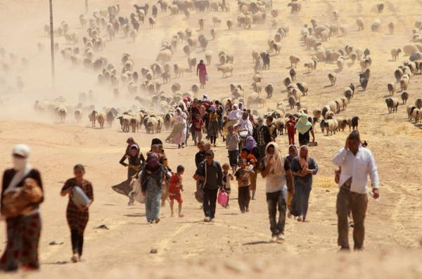 8-11-2014: Exodus: Persecuted Yazidis Flee Islamic State http://nbcnews.to/1q5sTER  (photo:@reuterspictures)