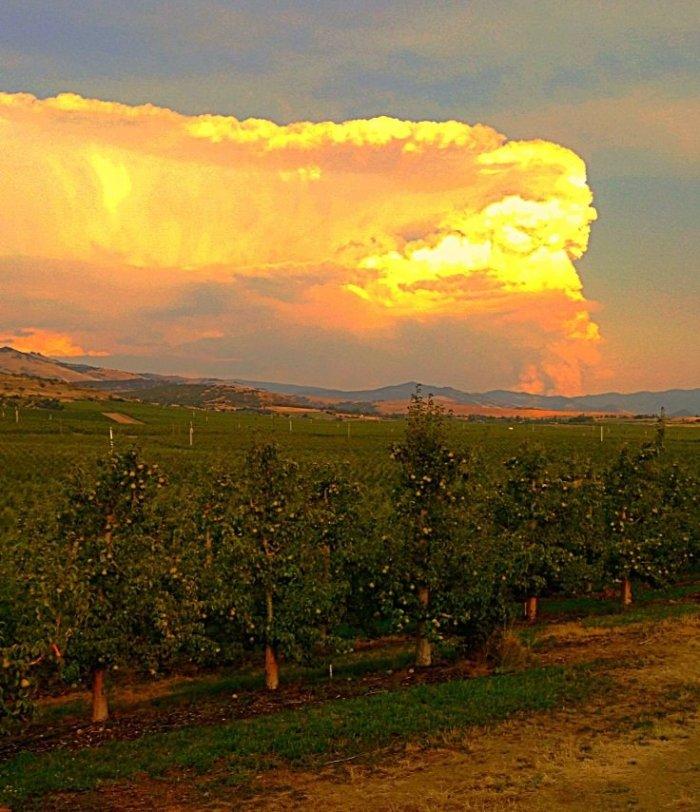 7-31-2014: Credit - Sheryl Haines Turner Looking toward Ashland, Oregon
