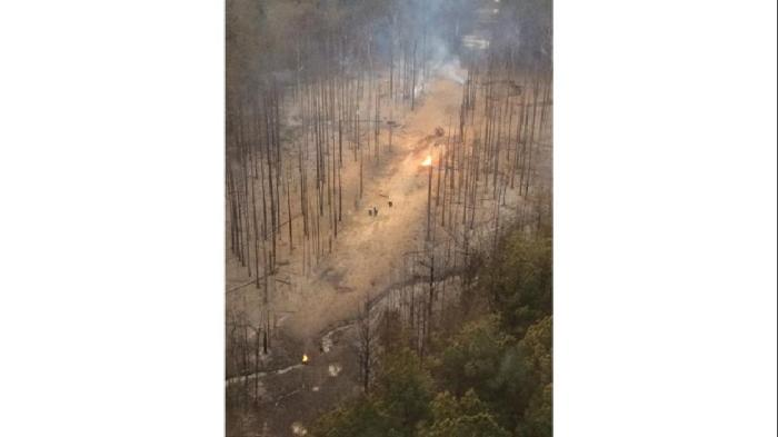 Taken from Skycopter by Jessica Golden, this image shows a torched forest following the explosion of a natural gas pipeline. (Jessica Golden/MSNewsNow.com)