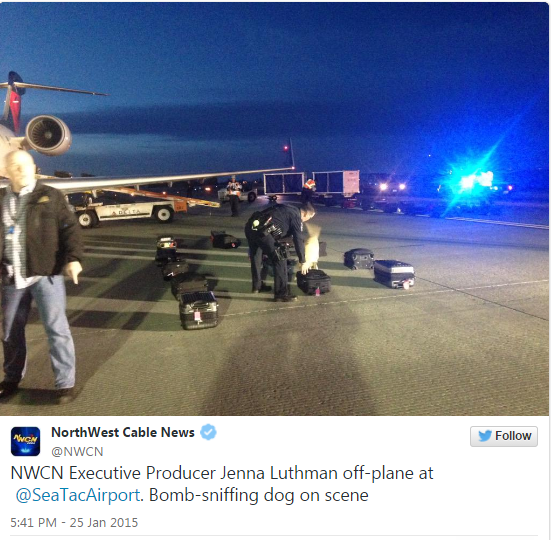 There seems to be no stopping of fake bomb threats directed at US airlines: two passenger jets landing in Seattle, Washington were evacuated and searched for explosives, while another flight was diverted to Dallas, Texas for similar safety procedures. A JetBlue flight from Long Beach, California, and a regional SkyWest jet from Phoenix were both isolated and searched for explosives by security teams with dogs at Seattle-Tacoma International Airport on Sunday. Passengers of JetBlue flight 1006 reportedly had to exit the plane, which had been sent to a far end of the airfield, using portable stairs, while their luggage was examined by detection dogs. The evacuation lasted for about 45 minutes.